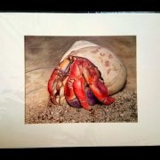 Matted print. Signed, matted, with a sturdy backing-board, and wrapped in a plastic sleeve for protection.