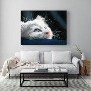 Blue-Eyed-Kitten-in-situ-living-room-metal-web