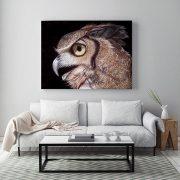 Horned-Owl-in-situ-living-room-metal-web