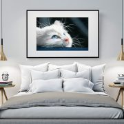 X-Large Framed Print of my Blue-Eyed Kitten drawing.