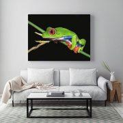 In-situ-Tree-Frog-Living-Room-web