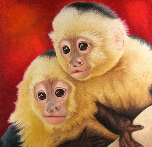 Two-Capuchin-Monkeys-504