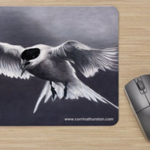 Arctic-Tern-in-Flight-Mousepad
