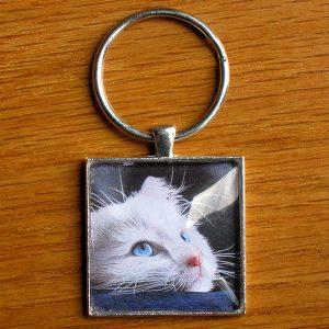 blue-eyed-kitten-keychain-600