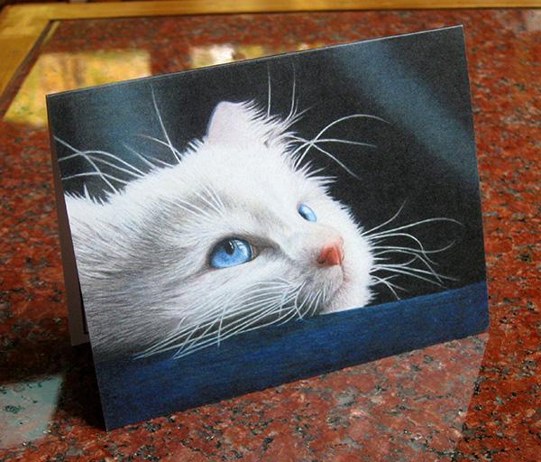 blue-eyed-kitten