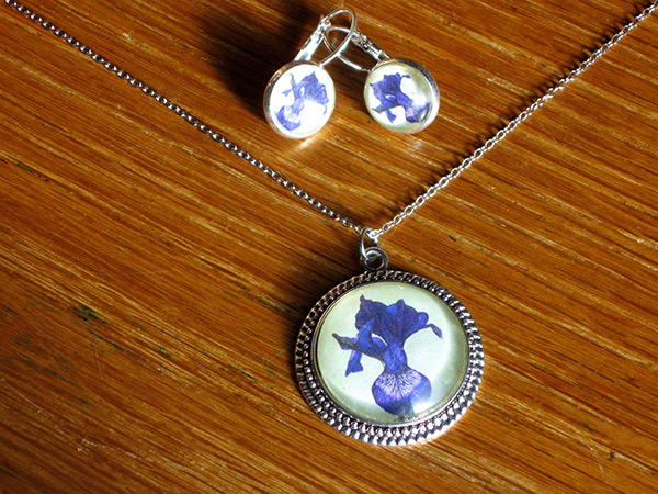 blue-iris-set