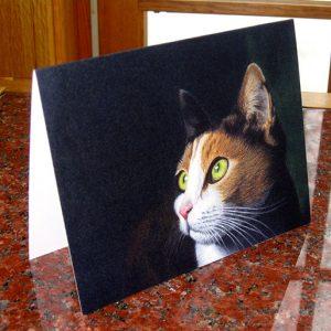 bright-eyes-card
