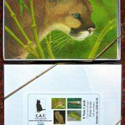 cougar-box-2
