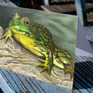green-frog