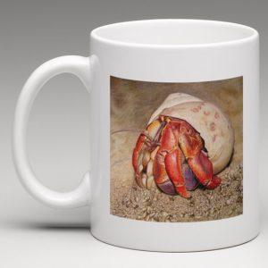 hermit-crab-mug-600