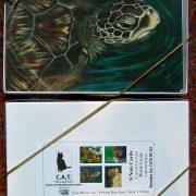 sea-turtle-box-2