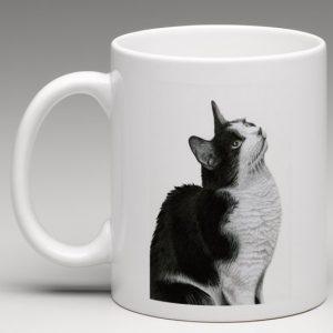 sylvestor-mug-600