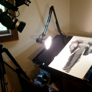 My NEW studio setup, including camera, with the African Elephant not quite finished.