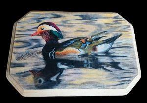 Mandarin Duck drawing on wood.