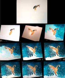 The Kingfisher drawing, section by section.